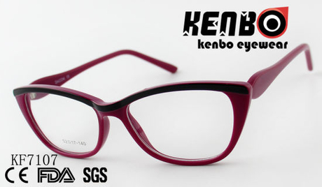 High Quality PC Optical Glasses Ce FDA Kf7107